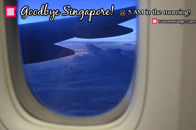 HONG KONG DISNEYLAND - HONG KONG EXTRAS3